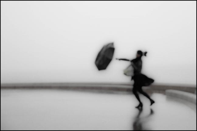 """""""Pendant la pluie """" @Fanny Genoux"""